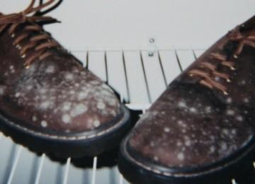 Как избавиться от запаха плесени на обуви