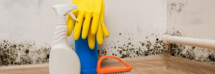Избавление квартиры от сырости: 7 доступных методов