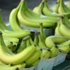 Как заставить фрукты быстрее созреть?