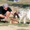 Голливудские звезды, которые очень любят собак