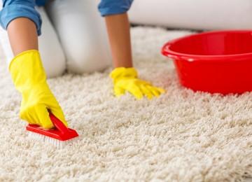Как и чем почистить ковер в домашних условиях