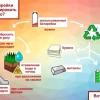 Почему нельзя выбрасывать батарейки в мусор?