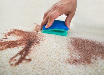Полезные советы по удалению пятен от цветочной пыльцы