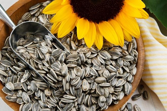 Как своими руками добыть и заготовить семена в домашних условиях