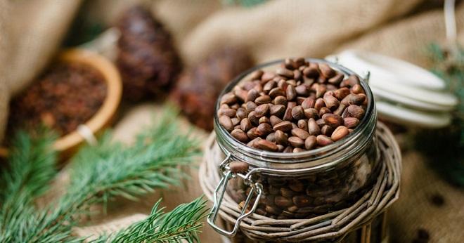 Выбор и хранение кедровых орешков