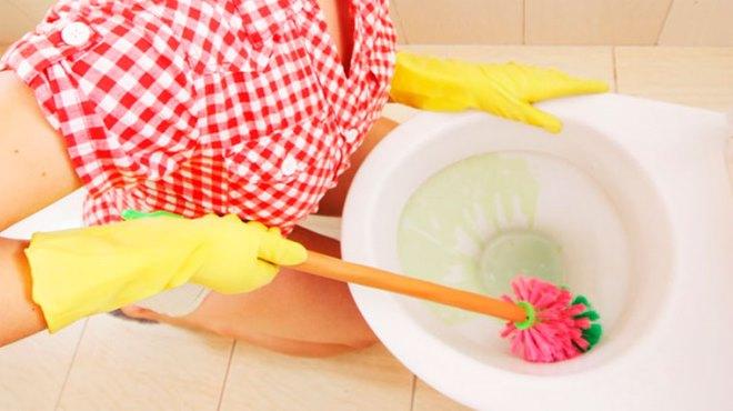 Зачем нужны чистящие средства для унитаза