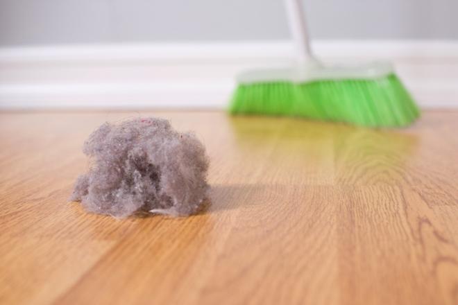 Из чего состоит пыль в квартире
