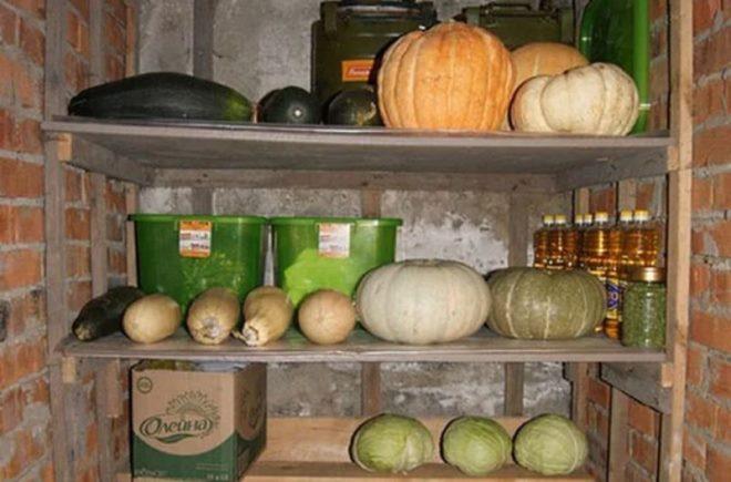 Как хранить кабачки на зиму в домашних условиях