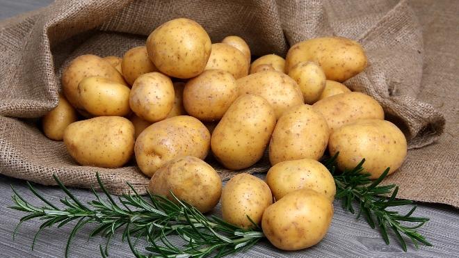 Как хранить картошку в домашних условиях